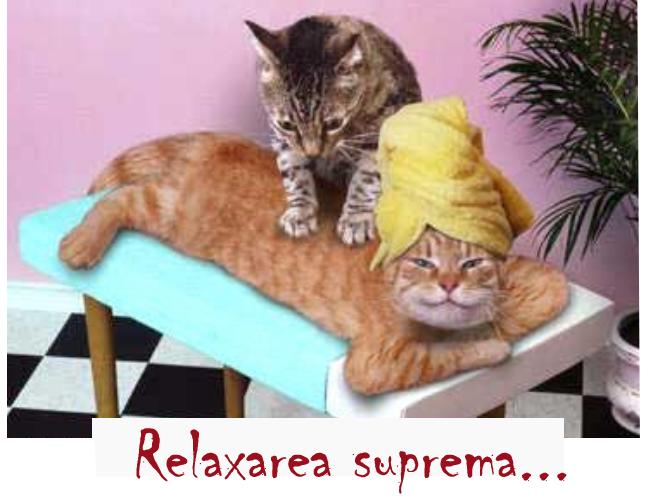 Razi din toata inima - Tehnici de relaxare