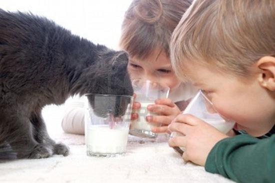 copiii si pisica