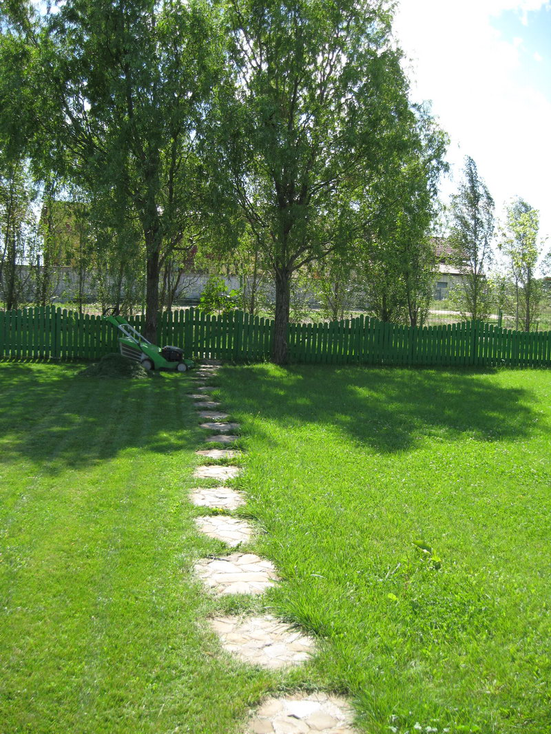 gradina verde