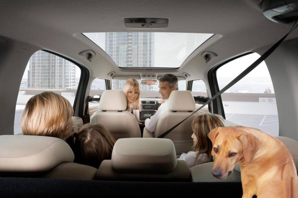 jocuri de familie calatorie cu masina
