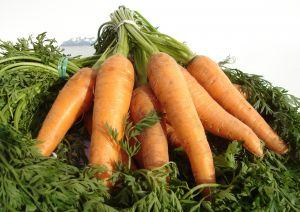 morcovi Alimente de primavara care te ajuta sa slabesti