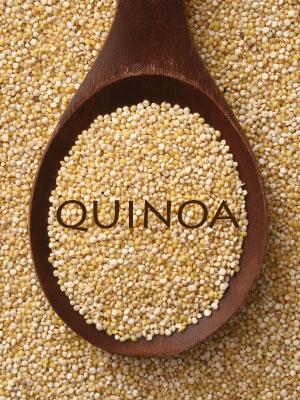 Quinoa canigivemydog.com