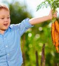 kidsgardening-org-legume-bio
