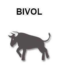 zodiac-chinezesc-bivol