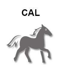 zodiac-chinezesc-cal