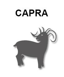 zodiac-chinezesc-capra