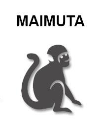 zodiac-chinezesc-maimuta