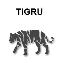 zodiac-chinezesc-tigru