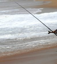 Top sapte beneficii pentru sanatate ale pescuitului