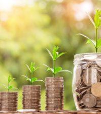 6 pasi importanti pentru gestionarea corecta a banilor
